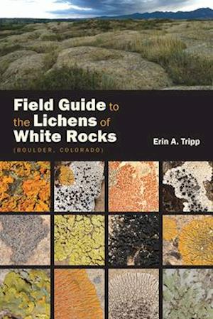 Bog, paperback Field Guide to the Lichens of White Rocks af Erin Tripp
