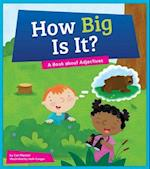 How Big Is It? (Say What Parts of Speech)
