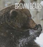 Brown Bears af Melissa Gish