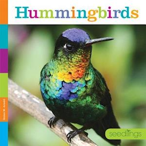 Hummingbirds af Quinn M. Arnold