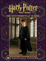 Harry Potter Poster Collection (Insights Poster Collections)