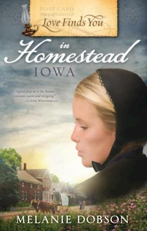 Love Finds You in Homestead, Iowa af Melanie Dobson