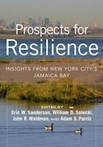 Prospects for Resilience
