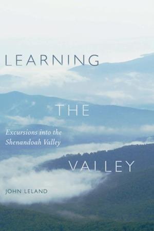 Learning the Valley af John Leland