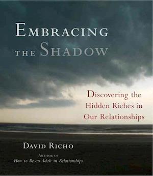 Embracing the Shadow af David Richo