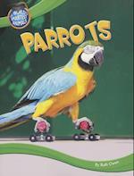Parrots af Ruth Owen