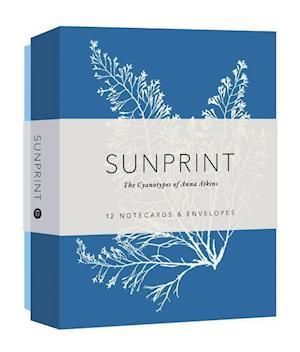Bog, ukendt format Sunprint Notecards af Princeton Architectural Press
