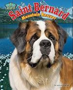 Saint Bernard af Jessica Rudolph