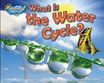 What Is the Water Cycle? af Ellen Lawrence