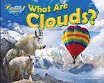 What Are Clouds? af Ellen Lawrence