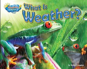 What Is Weather? af Ellen Lawrence