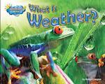 What Is Weather? af Ellen Lawrence