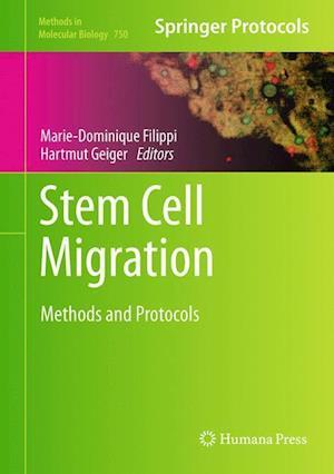 Stem Cell Migration af Marie Dominique Filippi, Hartmut Geiger