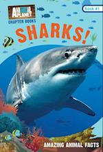 Sharks! (Animal Planet Chapter Book)