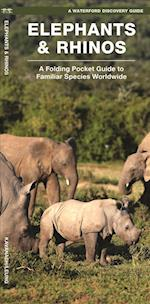 Waterford's Discovery Guide Elephants and Rhinos (Waterfords Discovery Guides)