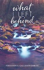 What I Left Behind af Fernando S. Gallegos-Garcia