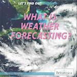 What Is Weather Forecasting? af Lynnae D. Steinberg