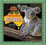 The Animals of Australia (Continent of Creatures 7 Volume Set New 2016)