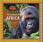 The Animals of Africa (Continent of Creatures 7 Volume Set New 2016)