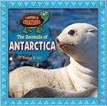 The Animals of Antarctica (Continent of Creatures 7 Volume Set New 2016)