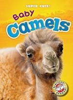 Baby Camels (Super Cute, nr. 35)