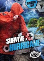 Survive a Hurricane (Survival Zone, nr. 8)