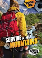 Survive in the Mountains (Survival Zone, nr. 8)