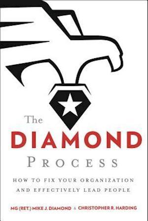 Bog, hardback The Diamond Process af Mg (Ret ). Mike J. Diamond