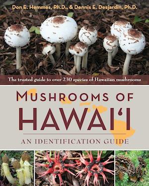 Bog, paperback Mushrooms of Hawai'i af Don Hemmes, Dennis E. Desjarding