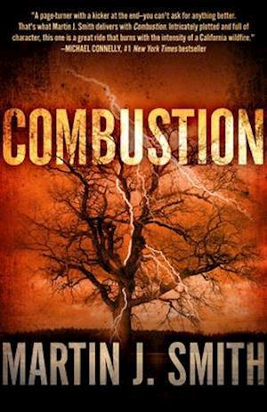 Combustion af Martin J. Smith