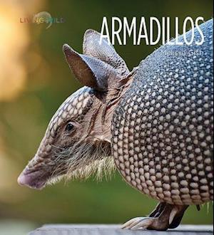 Bog, paperback Armadillos af Melissa Gish