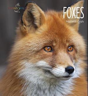 Bog, paperback Foxes af Melissa Gish