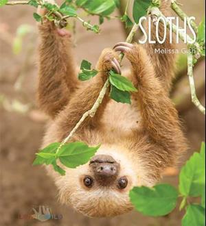 Bog, paperback Sloths af Melissa Gish