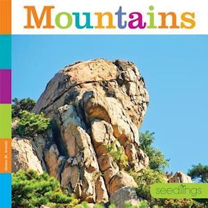 Bog, paperback Mountains af Kate Riggs