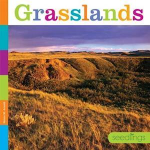 Bog, paperback Grasslands af Quinn M. Arnold