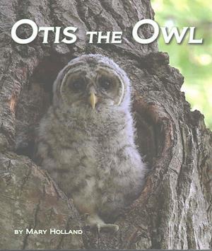 Bog, hardback Otis the Owl af Mary Holland