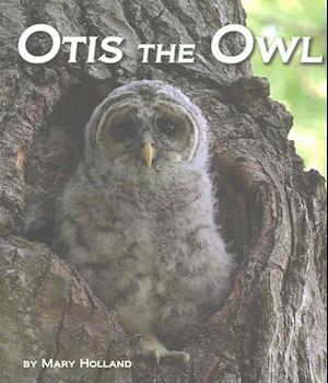 Bog, paperback Otis the Owl af Mary Holland