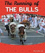 Running of the Bulls (Worlds Greatest Parties)