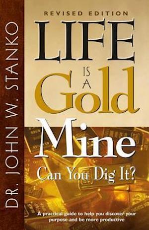 Bog, paperback Life Is a Gold Mine af John W. Stanko