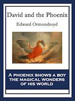 David and the Phoenix af Edward Ormondroyd