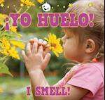 Yo huelo! / I Smell! (Babies World)