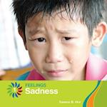 Sadness (21st Century Basic Skills Library Feelings)