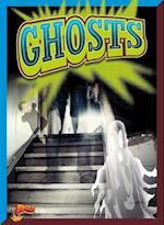 Ghosts af Elizabeth Noll