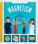 Magnetism at Work (Science at work)