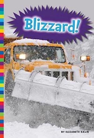 Bog, paperback Blizzard! af Elizabeth Raum