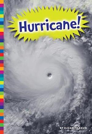 Bog, paperback Hurricane! af Elizabeth Raum
