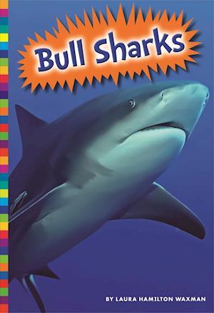Bog, paperback Bull Sharks af Laura Hamilton Waxman