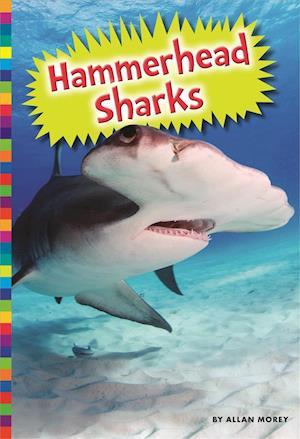 Bog, paperback Hammerhead Sharks af Allan Morey