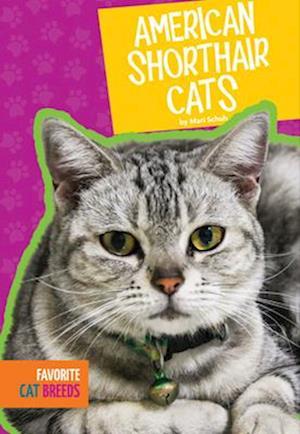 Bog, paperback American Shorthair Cats af Mari Schuh
