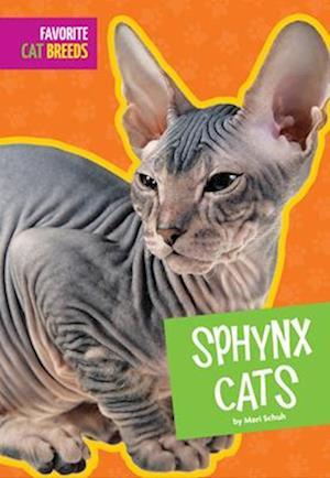 Bog, paperback Sphynx Cats af Mari Schuh
